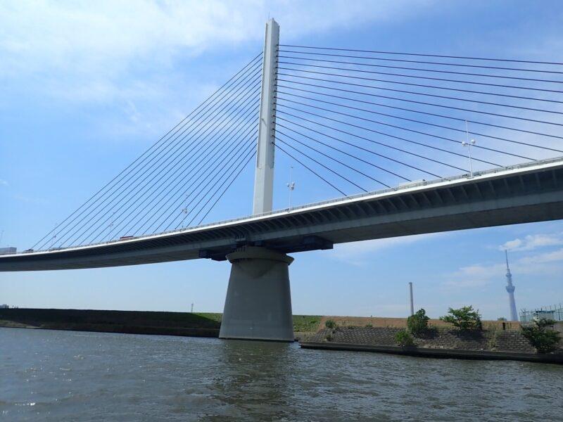 荒川から見える橋